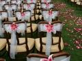 bayles-wedding11
